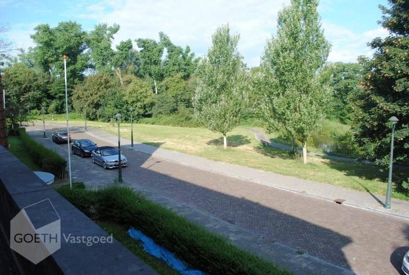 Jonckbloetlaan, Eindhoven