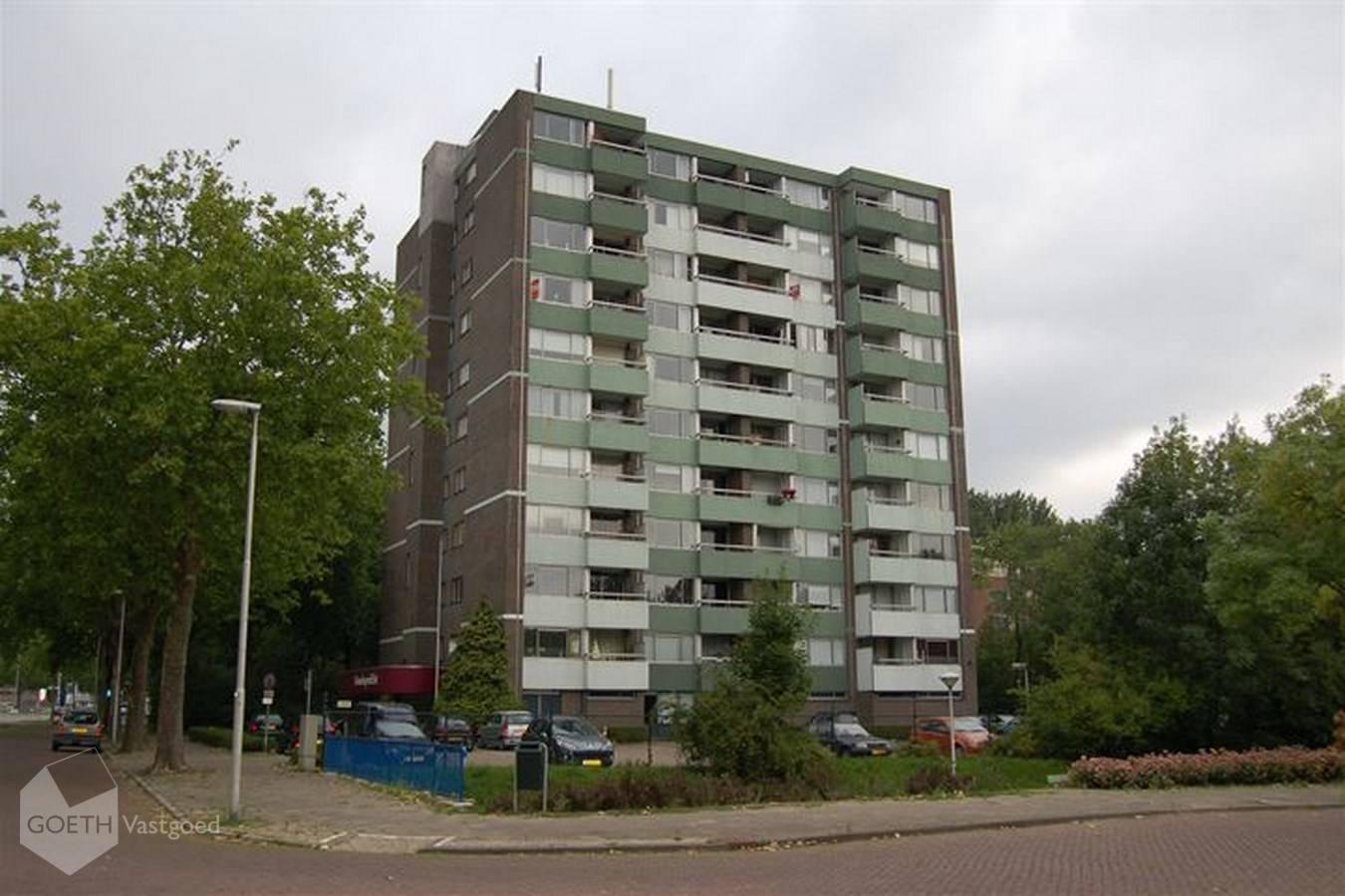 Limburglaan, Eindhoven